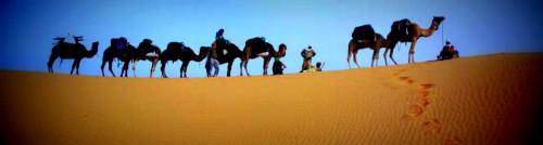 """""""désert tunisien authentique"""",spécialiste de la méharée,de la randonnée dans le grand erg oriental. vous invite à partag,d'aventure,sa conception basée sur l'authenticité,la rencontre,le partage  le respect de la nature,tourisme solidaire,durable,culturel,équitable,désert tunisie,partager,echanger,méharée,randonnée,cam des bedouins nomades,vous souhaitez organiser un bivouac dans le sahara,méharée dans le désert tunisien,trekking avec les dromadaires ou randonnée chamelière en tunisie,treks,randonnées,méharées,voyages en tunisie dans le désert,voyages en tunisie dans le désert du sahara,le désert a cet effet magique de vider presque instantanément la,en méharée,une méharée en tunisie : randonnée à dos de chameau,un excellent moyen de découvrir les immensités du grand erg. sur,le désert,une passion à partager ... les possibilités de randonnées et de,tunisie randonnées,trekking tunisie : circuit 4x4 dans le désert de tunisie,tourisme saharien,randonnées et excursions dans le désert tunisien,excursions randonnées et circuits dans le désert de tunisie,excursions en dromadaires,ong djemel,oasis de montagne tozeur,grottes berbères,organisation de randonnées et excursions dans le désert tunisien,randonnées chamelières à la carte"""