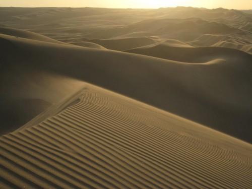 """""""On rentre au Sahara comme on rentre en religion""""  Théodore Monod, dunes, désert, Sahara, grand Erg oriental, tunisie, Douz, méharée, randonnée, dromadaires, trekking, nomades, bédouin, bivouac, puits, source, timbaine, houidhat erreched, bir Azeit, sif es souane, sif essouane, elmida, zemlet elborma"""